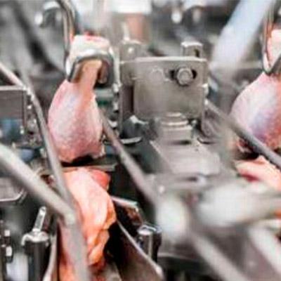 Оборудование для мясоперерабатывающей промышленности Baader